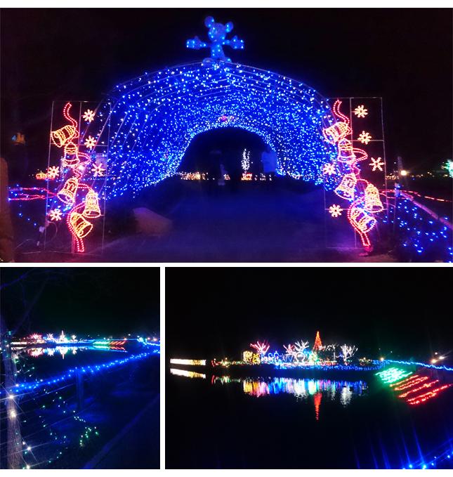 貴志川町の池をライトアップ
