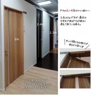 天井まであるドア